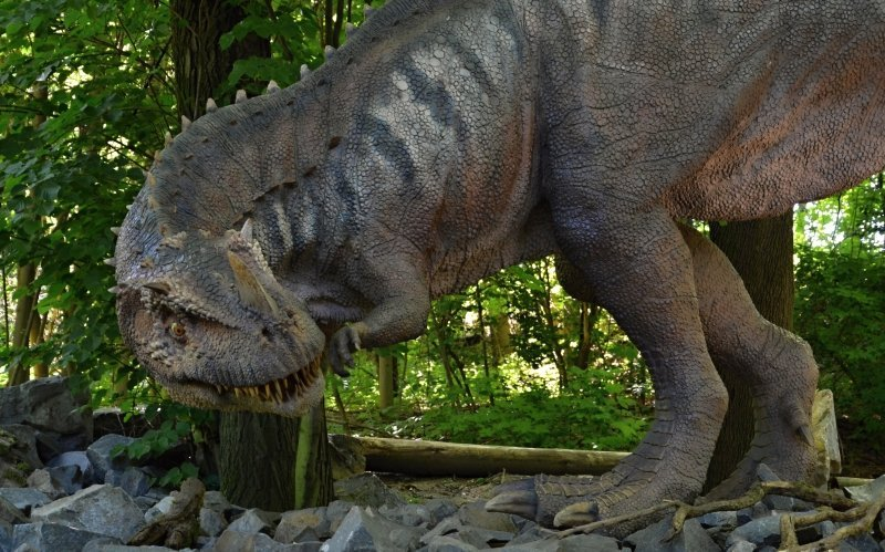 Dinosaurus ceratosaurus - rohatý ještěr