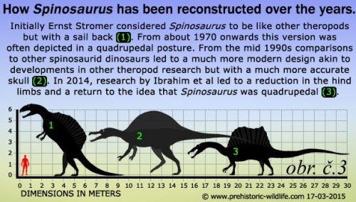 Změna pohledu na vzhled Spinosaura v průběhu času.