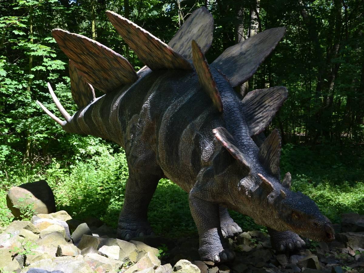 Model stegosaura z dinoparku Vyškov - upraveno