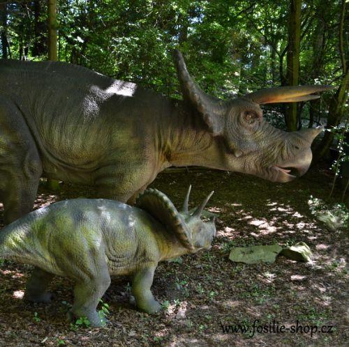 Pohled na dinosaura - triceratops a jeho mládě z boku.