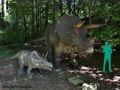 Dospělý triceratops s mládětem v porovnání rozměrů s dospělým člověkem.