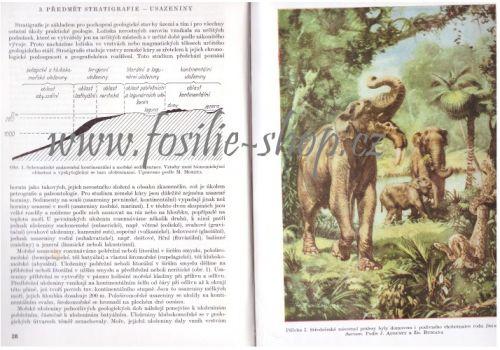 Geologická minulost Země - Dvořák, Růžička - ukazka