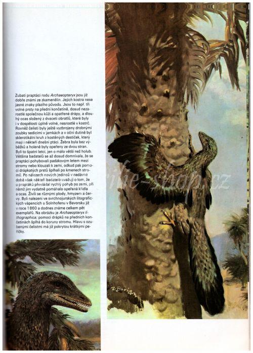 Archaeopteryx - Kniha o pravěku - Zdeněk V. Špinar, Zdeněk Burian