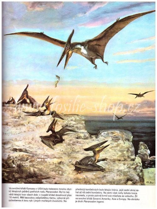 Pteranodon - Kniha o pravěku - Zdeněk V. Špinar, Zdeněk Burian