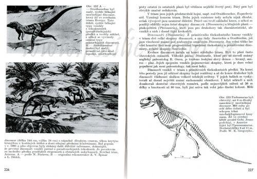 Ukázka z knihy - Paleontologie - Zdeněk V. Špinar