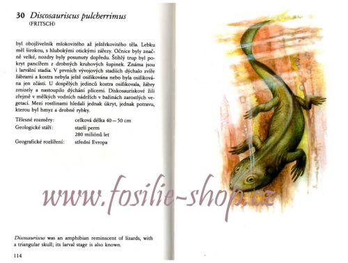 Pravěká zvířata - Josef Beneš, Zdeněk Berger - ukázka z knihy