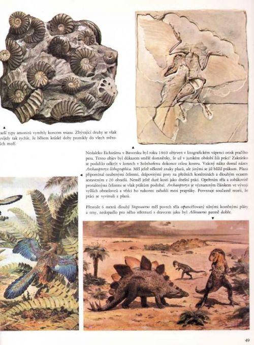 Ukázka z knihy Svět vymřelých zvířat