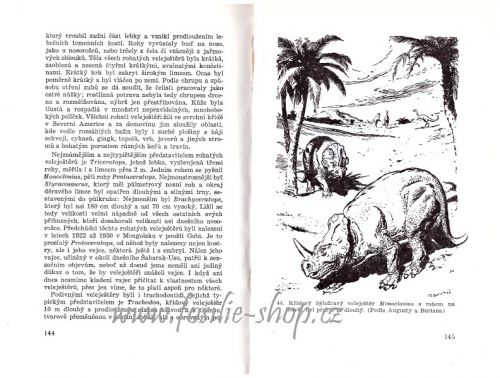Z pradějin tvorstva - Josef Augusta - ukázka