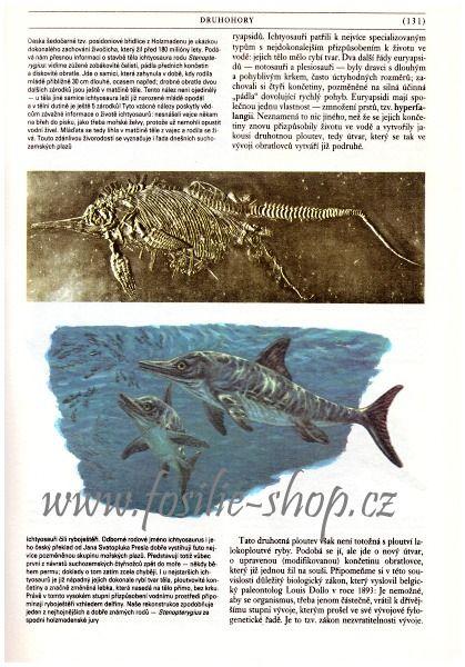 Kniha Zkamenělá minulost - Oldřich Fejfar - ukázka 1
