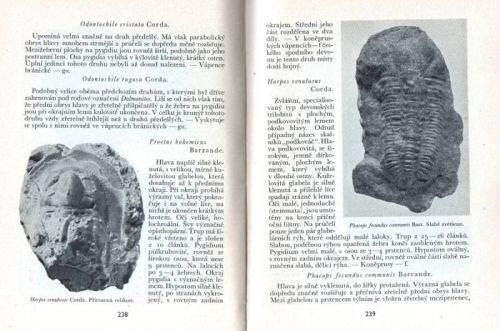 Zkameněliny českých pramoří - jejich sběr a určování - Ferdinand Prantl