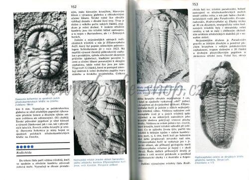 Ukázka z knihy: Zkamenělý svět - Rudolf Prokop - trilobiti